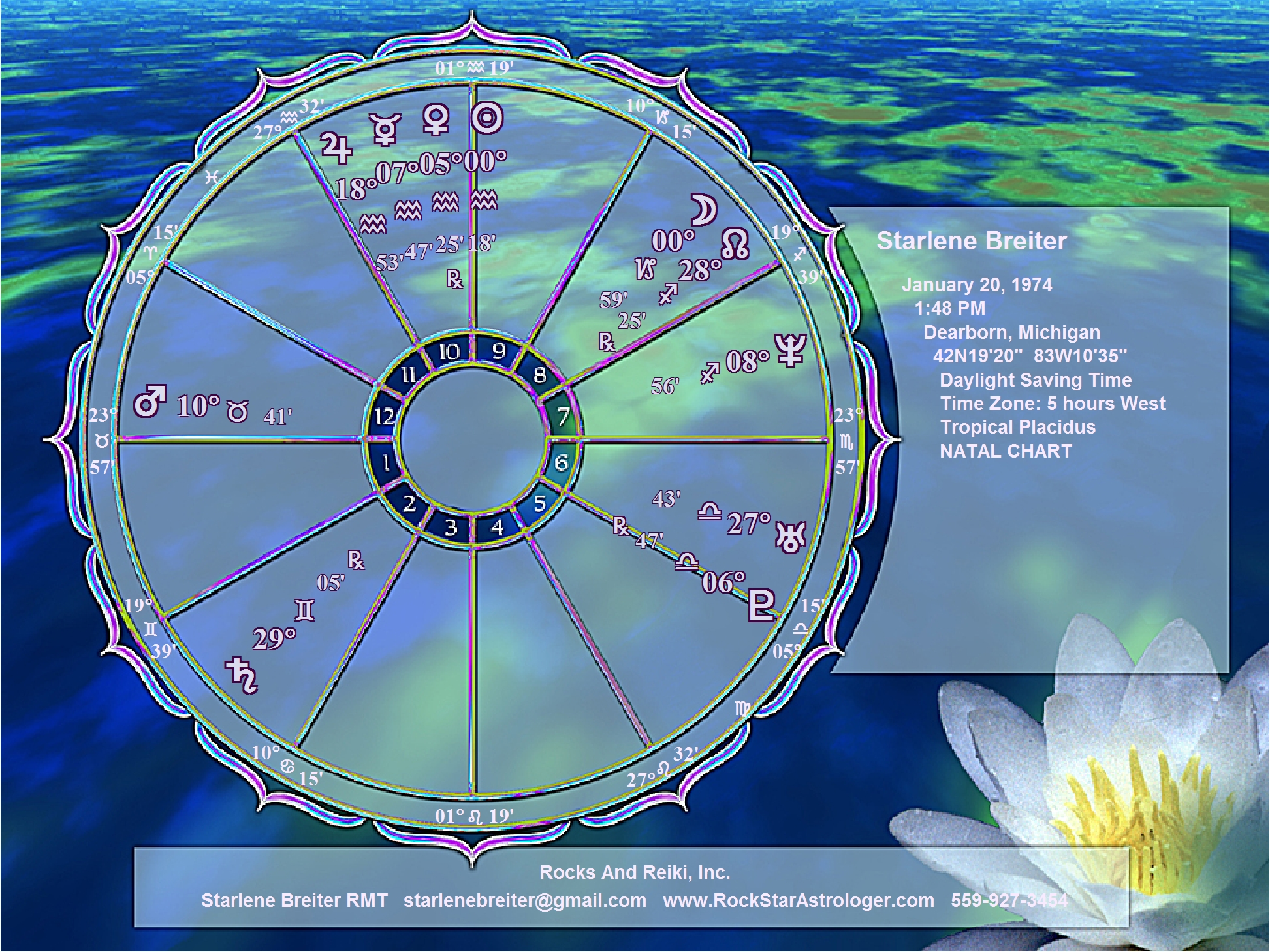 Astrological natal birth chart choice image free any chart examples astrology wheel chart choice image chart design ideas astrological natal birth chart art wheel rocksandreiki astrological nvjuhfo Choice Image
